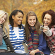 Group Of Four Teenage Girls Taking Picture With Camera Sitting O - Stock Photo
