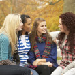 Group Of Four Teenage Girls Sitting And Chatting On Bench In Aut - Zdjcie stockowe