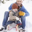 Father And Son Sitting On Sledge - Foto Stock