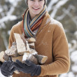 Teenage Boy In Snowy Landscape Carrying Logs - Stock fotografie