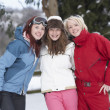 Group Of Teenage Girls In Snowy Landscape - Foto Stock