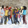 Group Of Teenage Friends Having Fun In Snowy Landscape - Foto de Stock