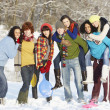 Group Of Teenage Friends Having Fun In Snowy Landscape - 图库照片