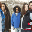 Group Of Teenage Friends Having Fun In Snowy Landscape Wearing S - Stock fotografie