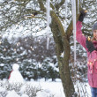 Teenage Girl Hanging Fairy Lights In Tree With Icicles In Foregr - Stok fotoraf
