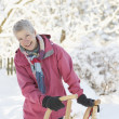 Senior Woman Holding Sledge In Snowy Landscape - Stock fotografie