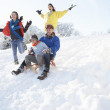 Family Having Fun Sledging Down Snowy Hill — Stock Photo
