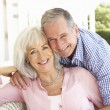 Portrait Of Senior Couple — Stock Photo #4838674