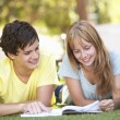 Teenage Student Couple Studying In Park — Stok fotoğraf