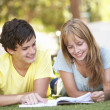 Teenage Student Couple Studying In Park — Foto Stock