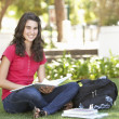 Female Teenage Student Studying In Park — Lizenzfreies Foto
