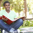 Male Teenage Student Studying In Park — Stock Photo #4838914