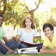 Stock Photo: Group Of Teenage Students Chatting Together In Park