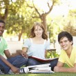 Group Of Teenage Students Chatting Together In Park — Stock Photo #4838916