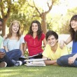 Group Of Teenage Students Chatting Together In Park — Stock Photo #4838918