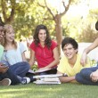 Group Of Teenage Students Chatting Together In Park — Lizenzfreies Foto
