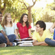 Group Of Teenage Students Chatting Together In Park — Stock Photo #4838920