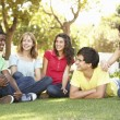Group Of Teenagers Chatting Together In Park — Stock Photo