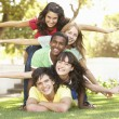 Group Of Teenagers Piled Up In Park — Stock Photo #4838930