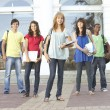 Group Of Teenage Students Standing Outside College Building — Stock Photo #4838974