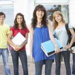 Grupo de estudiantes adolescentes edificio Universidad exterior de pie — Foto de Stock