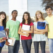 Group Of Teenage Students Standing Outside College Building — Stock Photo #4838980