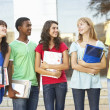 Group Of Teenage Students Standing Outside College Building — Stock Photo #4838981