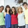 Group Of Teenage Students Standing Outside College Building — Stock Photo #4838983