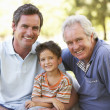 Foto de Stock  : Grandfather With Father And Son In Park