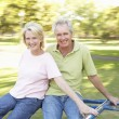 Senior Couple Riding On Roundabout In Park — Stock Photo