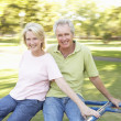 Stock Photo: Senior Couple Riding On Roundabout In Park