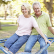 Senior Couple Riding On Roundabout In Park — Stock Photo #4839115