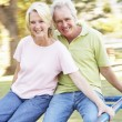 Senior Couple Riding On Roundabout In Park — Lizenzfreies Foto
