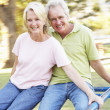 Senior Couple Riding On Roundabout In Park — Stock Photo #4839116