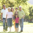 Extended Group Portrait Of Family Enjoying Walk In Park — Foto de Stock