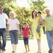 Extended Group Portrait Of Family Enjoying Walk In Park — Stock Photo