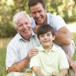 Grandfather With Son And Grandson In Park — Stock Photo #4839393