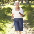 Senior Woman Jogging In Park — Stock Photo