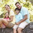 Family Sitting On Tree In Park — Stock Photo