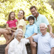Portrait Of Extended Family Group In Park — Foto de Stock
