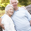 Senior Couple Walking In Park — Stockfoto