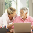 Adult Daughter And Senior Father Using Laptop At Home — Stock Photo #4839742