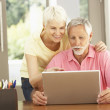 Senior Couple Using Laptop At Home — Stock Photo #4839767
