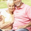 Senior Couple Relaxing In Garden — Stock Photo #4839929