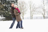 Senior Couple Walking In Snowy Landscape — Stock Photo