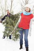 Senior Couple Carrying Christmas Tree In Snowy Landscape — Stock Photo