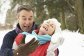 Senior Couple Having Snowball Fight In Snowy Woodland — Stock Photo