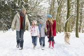Family Walking Dog Through Snowy Woodland — Stock Photo