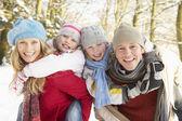 楽しい雪に覆われた森林を持っている家族 — ストック写真