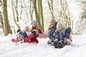Family Sledging Through Snowy Woodland — Stock Photo